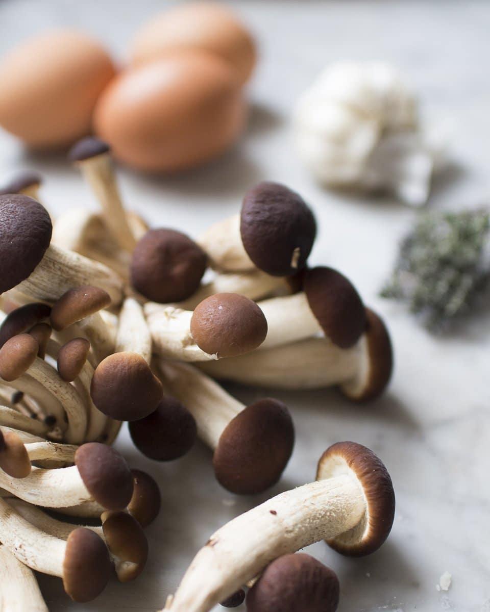 carbonara di funghi