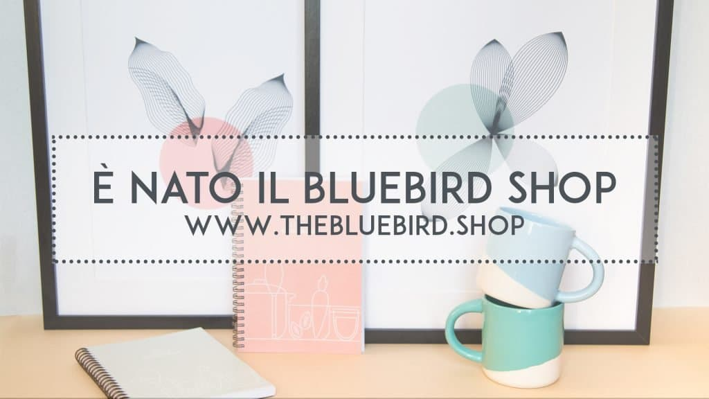 the bluebird shop